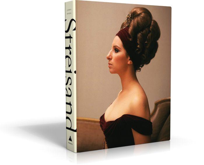 Streisand: In the Camera Eye (Barbra Streisand) barbra streisand barbra streisand partners 2 lp cd