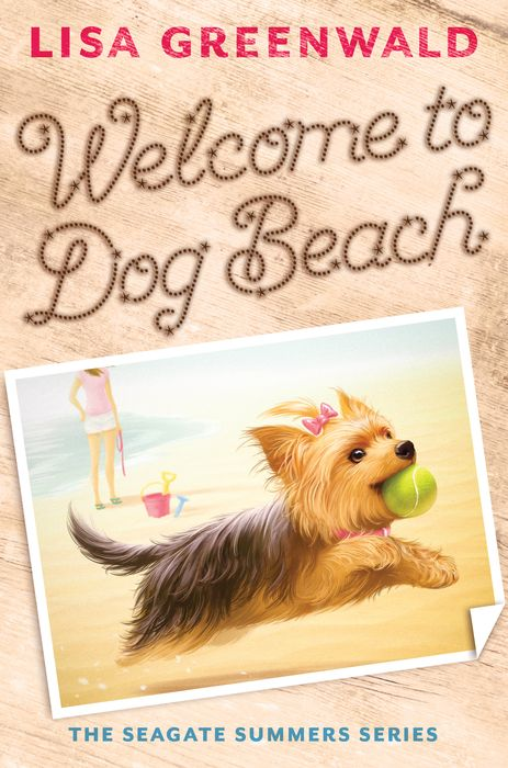 Welcome to Dog Beach new mf8 eitan s star icosaix radiolarian puzzle magic cube black and primary limited edition very challenging welcome to buy