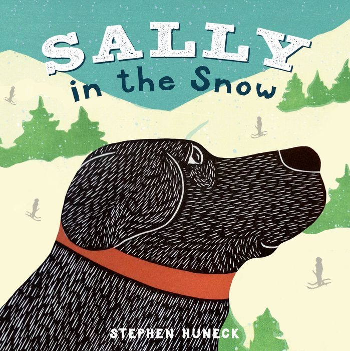Sally in the Snow 331 kinds of world famous dog domestication and appreciation book novice domesticated dog books