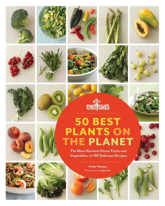 50 Best Plants on the Planet jewish soul food from minsk to marrakesh more than 100 unforgettable dishes updated for today s kitchen