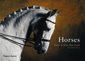 Horses шах назарова английский для вас купить