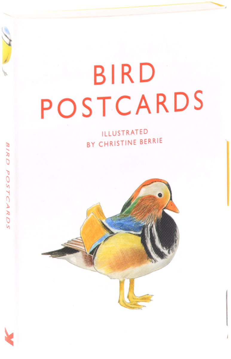 Bird Postcards (набор из 21 открытки) 30pcs in one postcard take a walk on the go paris france christmas postcards greeting birthday message cards 10 2x14 2cm