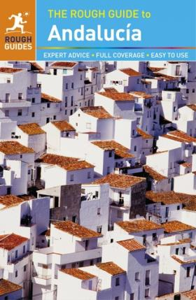 The Rough Guide to Andalucia david buckham executive s guide to solvency ii