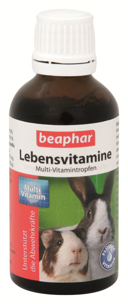 Витамины для грызунов Beaphar Lebensvitamine, 50 мл13118Витамины Beaphar Lebensvitamine - кормовая добавка для морских свинок, кроликов, хомяков и других грызунов. Препарат компенсирует недостаток витаминов в корме, выражающийся в плохом состоянии животного. Применяется для домашних животных ежедневно перорально путем смешивания продукта с кормом или питьевой водой. Количество зависит от массы животного. Поэтому определите точный вес животного перед применением витаминного раствора. Состав: вода; белки, жиры, клетчатка, зола, кальций, фосфор, натрий, магний. Добавки: витамин C 8500 мг/л; витамин E 2200 мг/л; витамин K 210 мг/л; витамин B1 600 мг/л; витамин B2 450 мг/л; пантотенат кальция 1250 мг/л; никотинамид 9 000 мг/л; витамин B6 2 000 мг/л; витамин B12 1750 мг/л; биотин 17 500 мг/л; сорбит E 420; эмульгатор E 484; консерванты E 202; питательные кислоты.Объем: 50 мл.Товар сертифицирован.