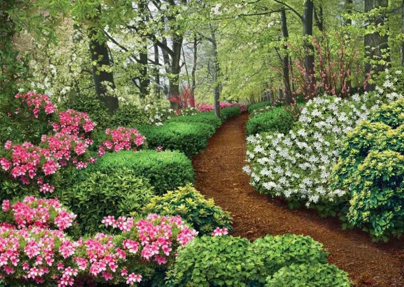 Фотообои Твоя Планета Premium. Весенний сад, 8 листов,272 х 194 см4607161056110Основа фотообоев Твоя Планета Premium. Весенний сад - импортная бумага высокого качества и повышенной плотности с нанесенным на неё цветным фотоизображением. Технология сборки фрагментов в единую картину довольно проста. Это наиболее распространенный вид обоев, позволяющих создать в квартире (комнате) определенное настроение и даже несколько расширить оптический объем. Фотообои пользуются популярностью потому, что они недорогие и при этом позволяют получить массу удовольствий при созерцании изображения.Количество листов: 8. Размер (ШхВ): 272 см х 194 см.
