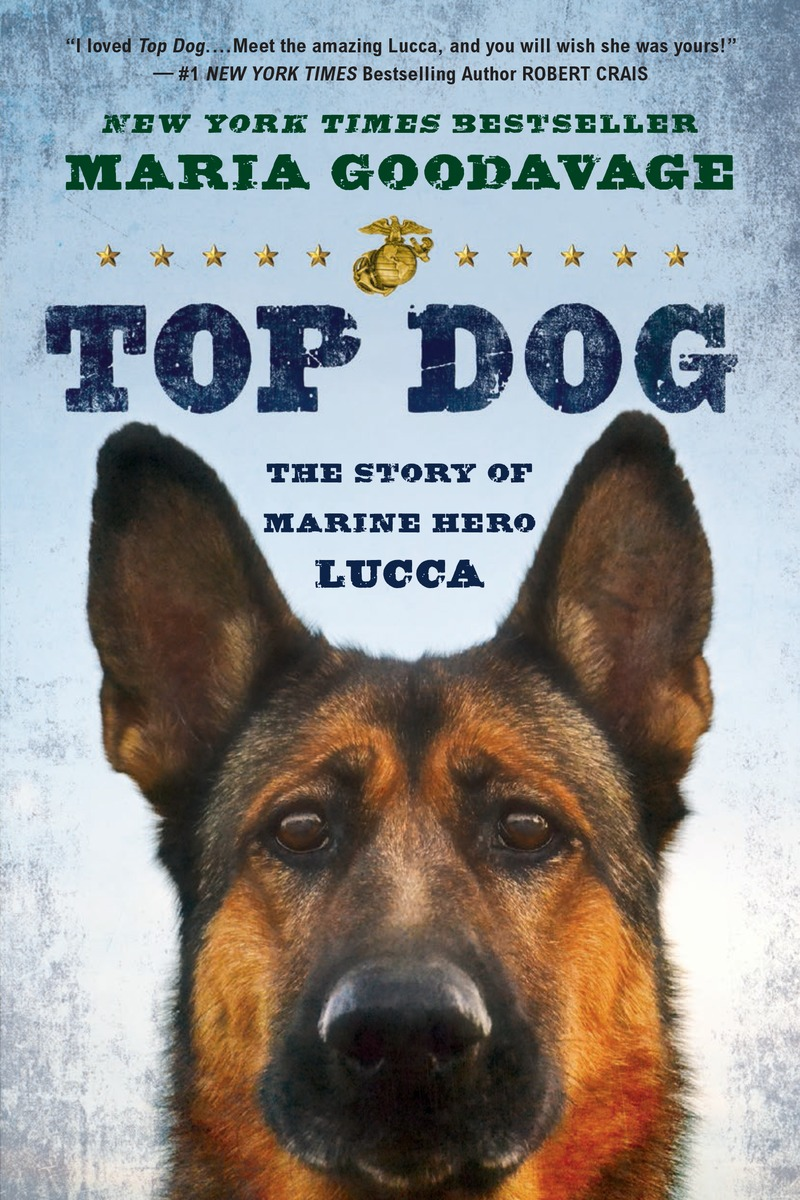 TOP DOG nation–building – beyond afghanistan and iraq
