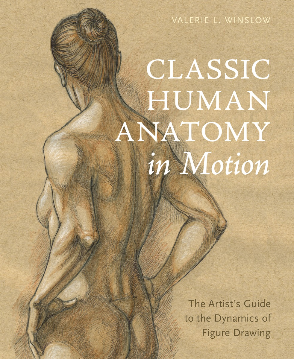 Classic Human Anatomy in Motion: The Artist's Guide to the Dynamics of Figure Drawing велосипед stark shooter 4 2016