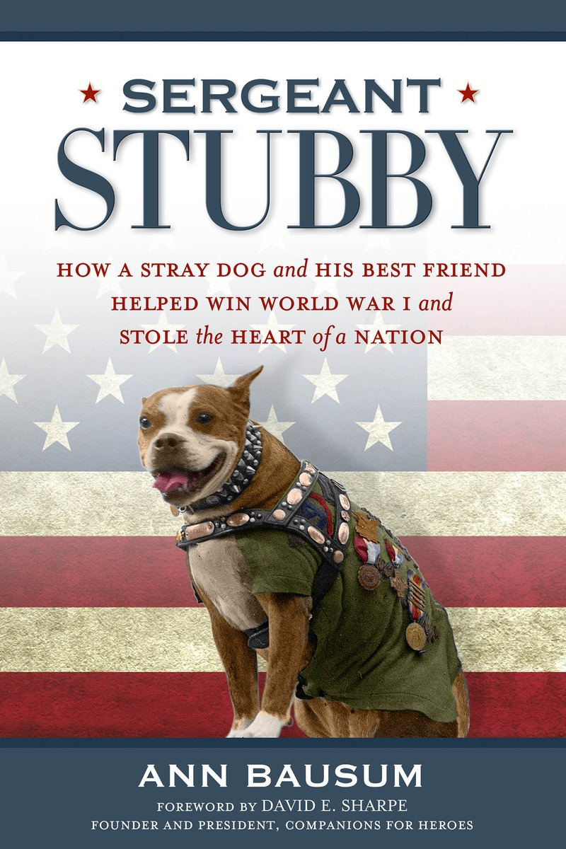 SERGEANT STUBBY tom mcnichol ac dc the savage tale of the first standards war
