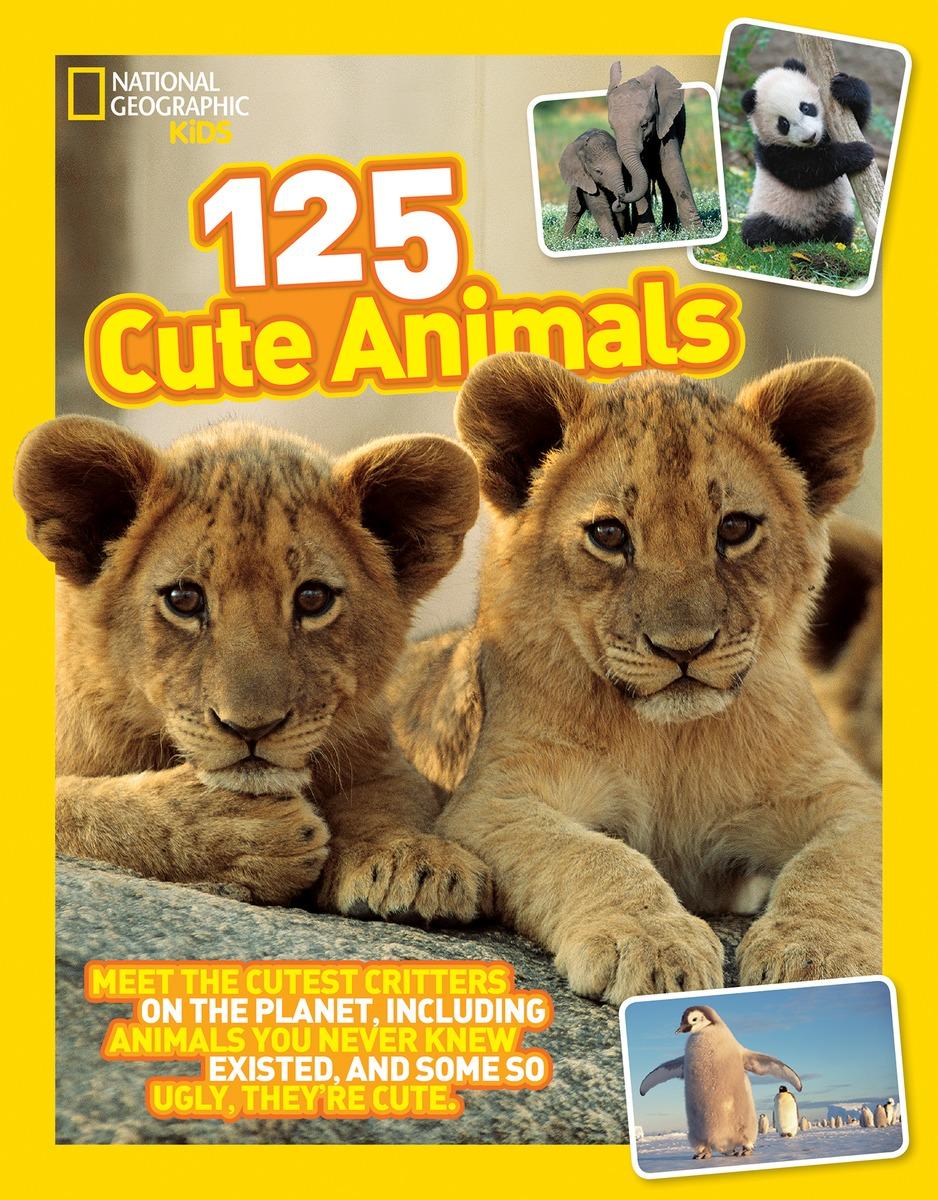 125 CUTE ANIMALS fluffy animals
