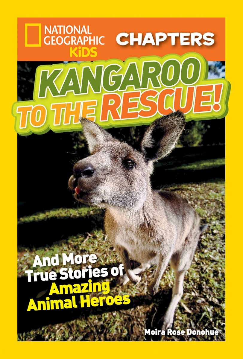 NGK CHAPTERS: KANGAROO national geographic kids chapters scrapes with snakes