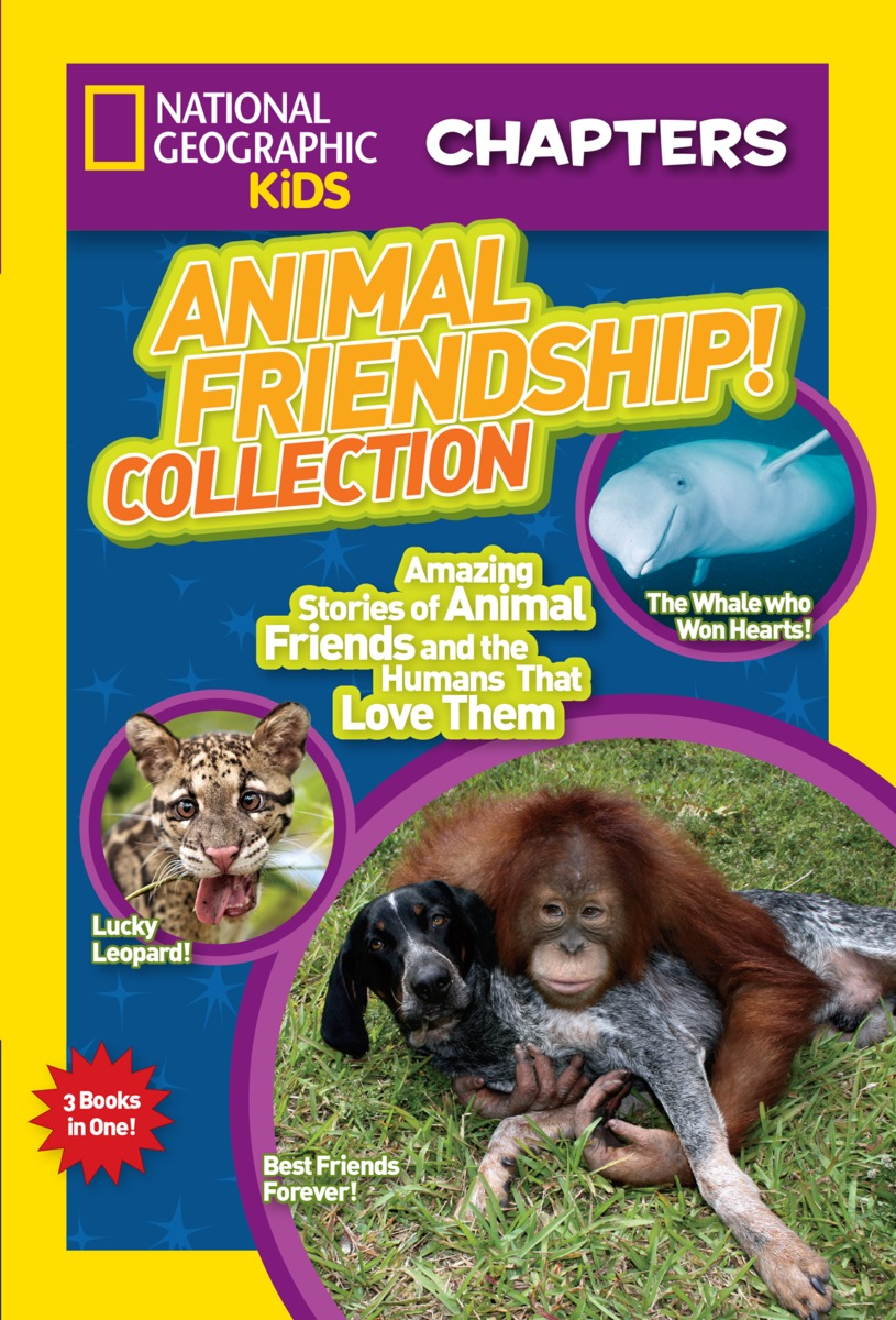 NGK CHAPTERS: FRIENDSHIP COLL national geographic kids chapters scrapes with snakes