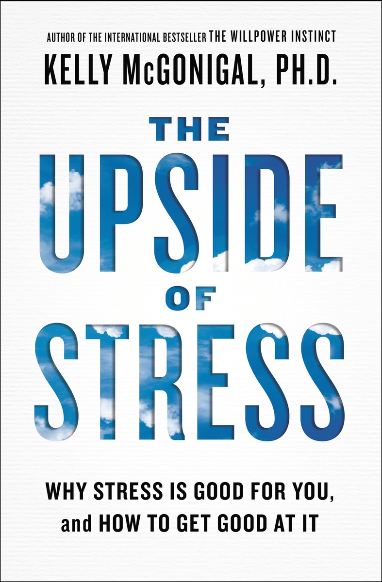 UPSIDE OF STRESS, THE egor kuzmin stress relief how to