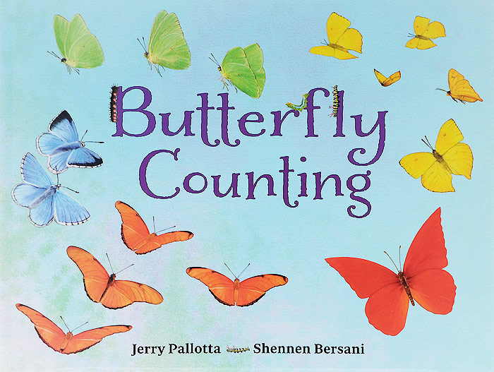 Butterfly Counting the twenty three