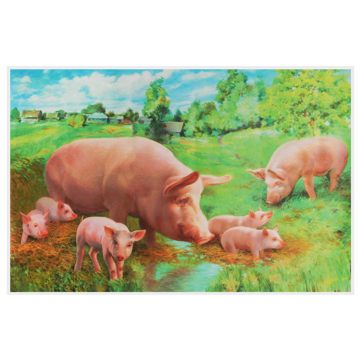 Свинья с поросятами. Плакат