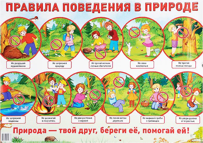 Правила поведения в природе. Плакат правила перехода через улицу плакат