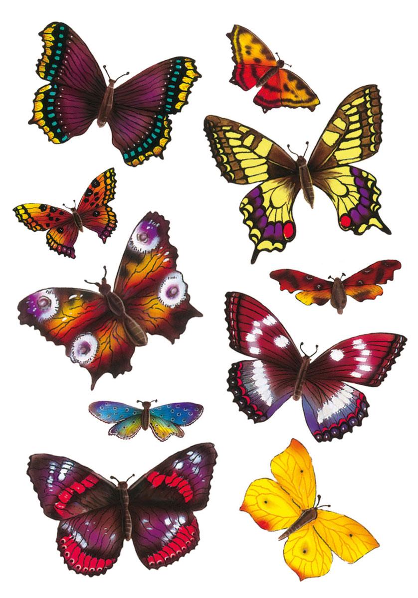 3D-наклейки Magic Экзотические бабочки