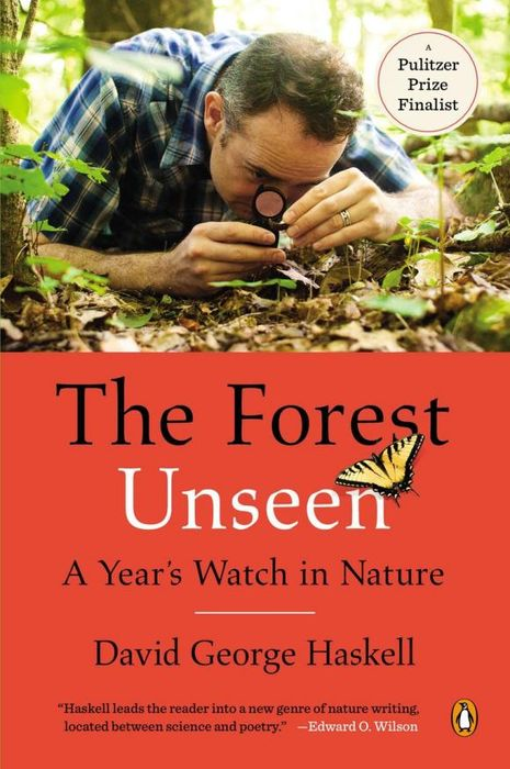 The Forest Unseen the forest unseen