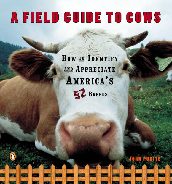 A Field Guide to Cows david buckham executive s guide to solvency ii