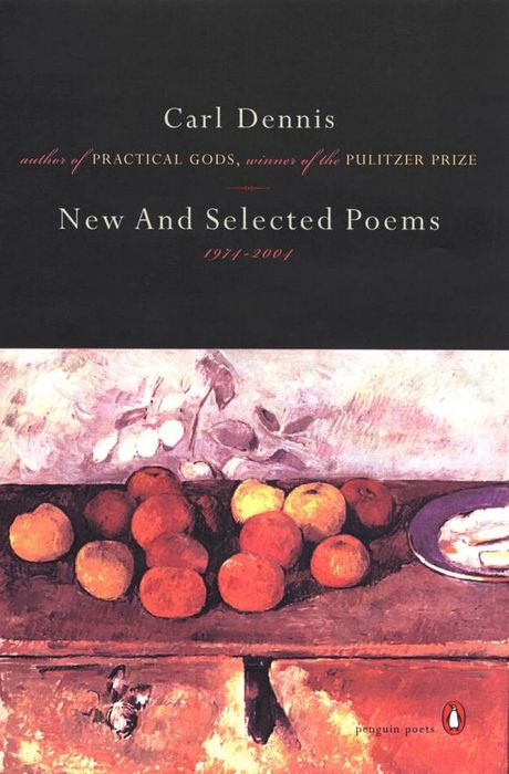 New and Selected Poems 1974-2004 spacks street new and selected poems