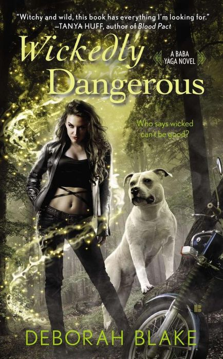 Wickedly Dangerous dangerous journey