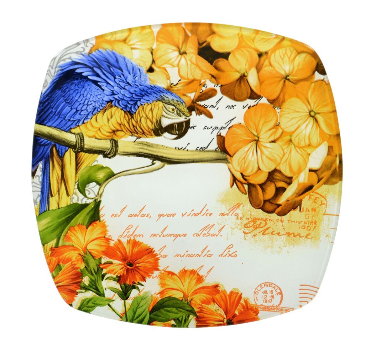 Тарелка Zibo Shelley Попугай, 25 х 25 см тарелка под пасту 25 5 см royal porcelain тарелка под пасту 25 5 см