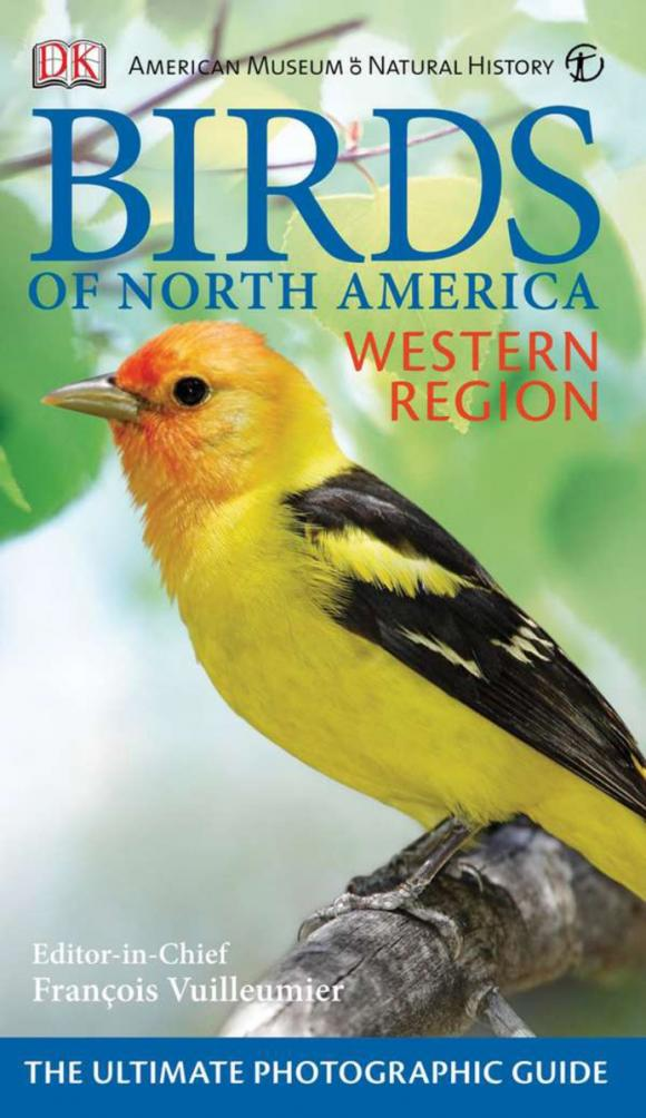 American Museum of Natural History Birds of North America Western Region a natural history of vision paper