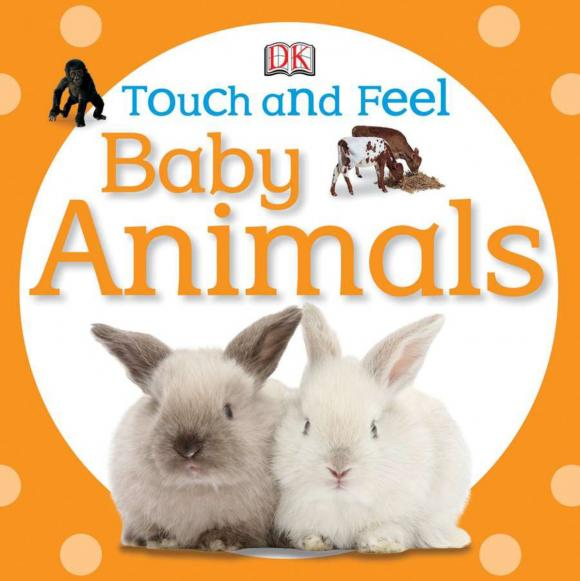 Touch and Feel: Baby Animals touch and feel dinosaur touch
