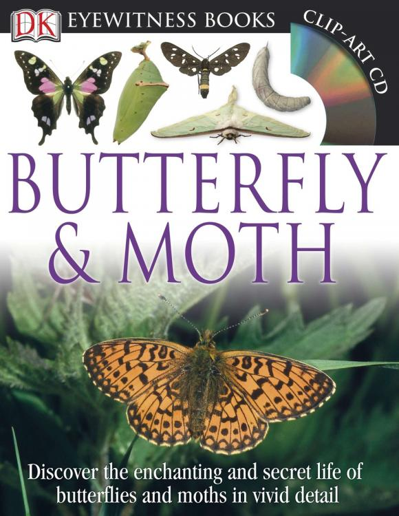 DK Eyewitness Books: Butterfly and Moth barbara taylor dk eyewitness books arctic and antarctic