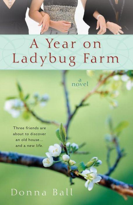 A Year on Ladybug Farm a year on ladybug farm