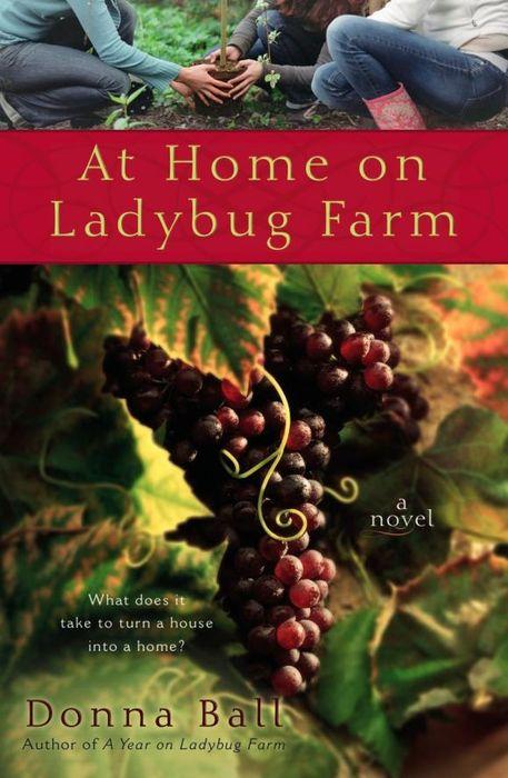 At Home on Ladybug Farm a year on ladybug farm