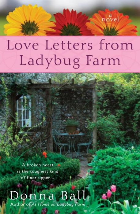 Love Letters from Ladybug Farm love letters uab cd ri