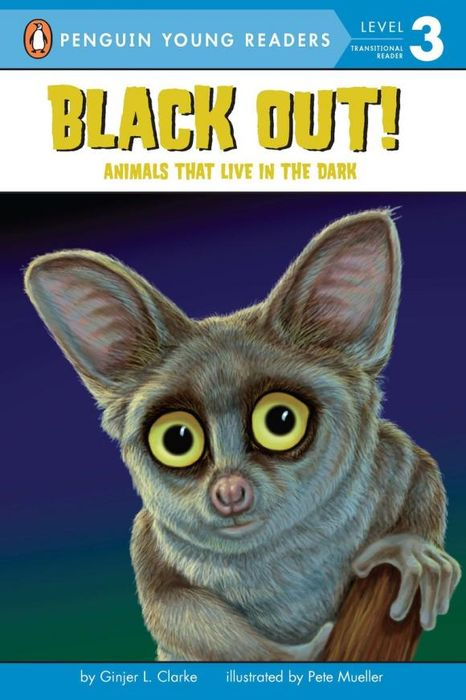 Black Out!: Animals That Live in the Dark live out monterrey 2017