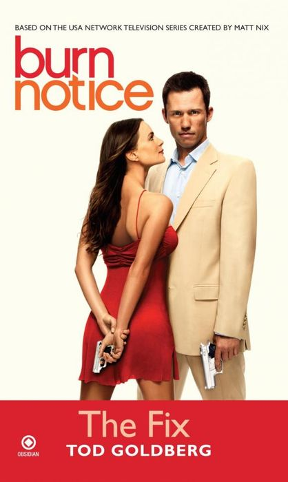 Burn Notice: the Fix the burn the burn the smiling face