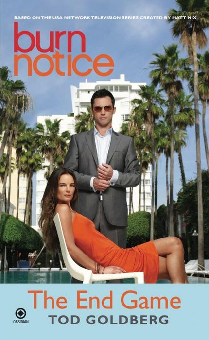 Burn Notice: the End Game the burn the burn the smiling face