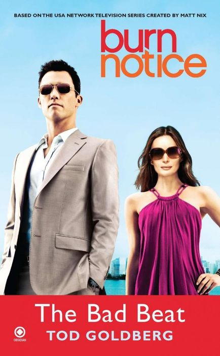 Burn Notice: the Bad Beat the burn the burn the smiling face