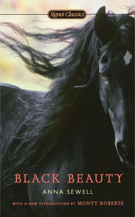 Black Beauty black beauty