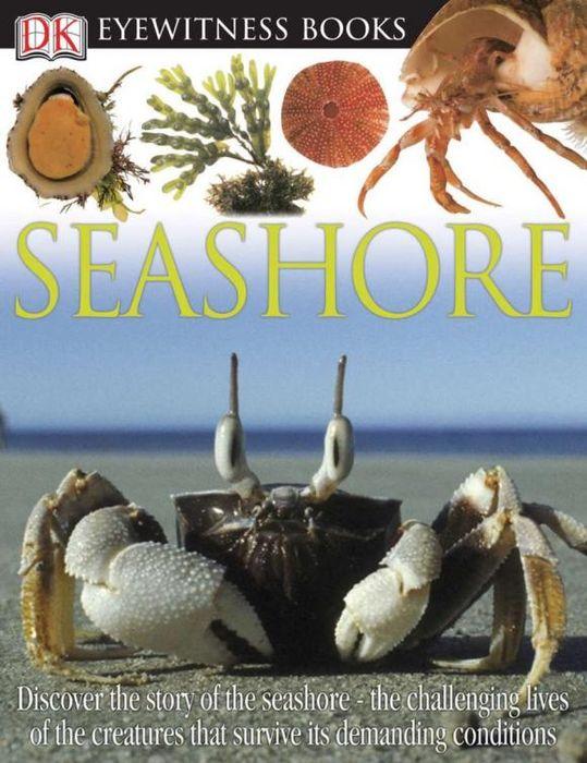 DK Eyewitness Books: Seashore atlantic seashore 72365 41 65