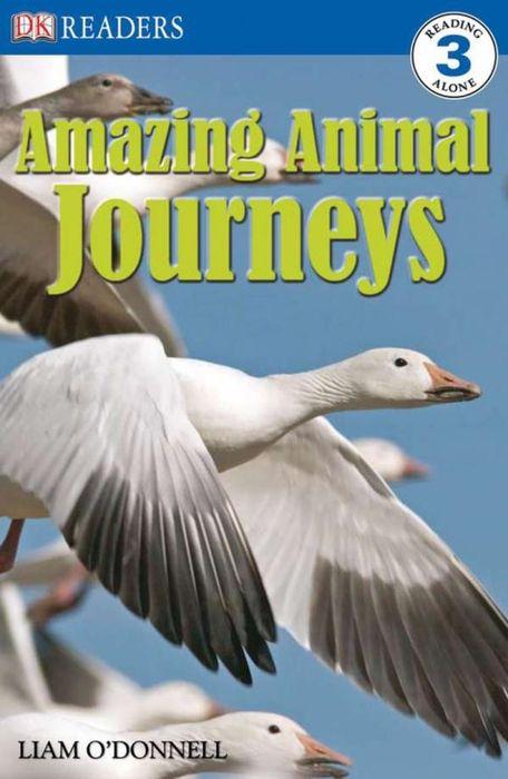 DK Readers L3: Amazing Animal Journeys dk readers horse heroes true stories of amazing horses