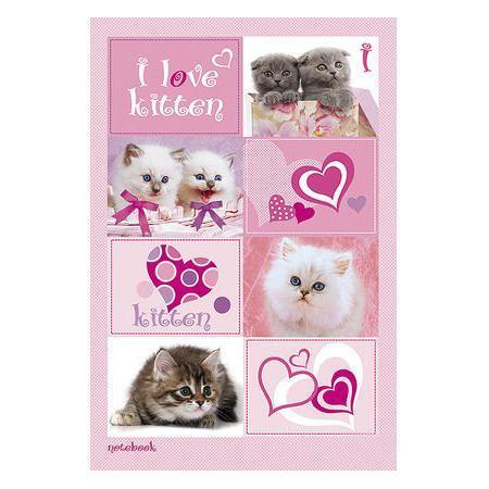 Бизнес блокнот 80л А5ф 144Х208мм тониров.блок тв.переплет I Love kitten ВАНИЛЬ1502012