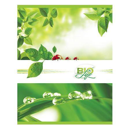 Тетрадь 96л А5ф клетка на скобе серия Bio Life0909241Тетрадь с обложкой из картона, защищающей бумагу от деформации.