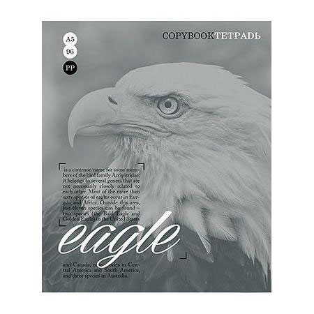 Тетрадь 96л А5ф клетка на скобе серия Тайны природы, цвет: серый Eagle96Т5B1_серыйТетрадь 96л А5ф клетка на скобе серия Тайны природы, цвет: серый Eagle