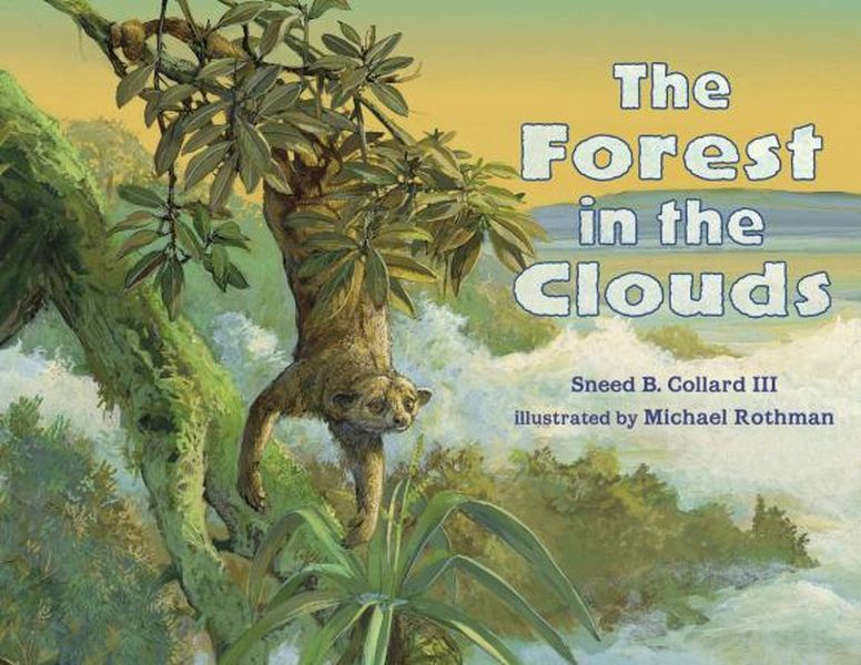 The Forest in the Clouds christie a death in the clouds