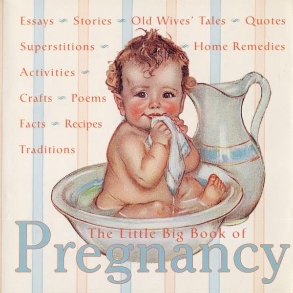 The Little Big Book of Pregnancy the little lady of the big house