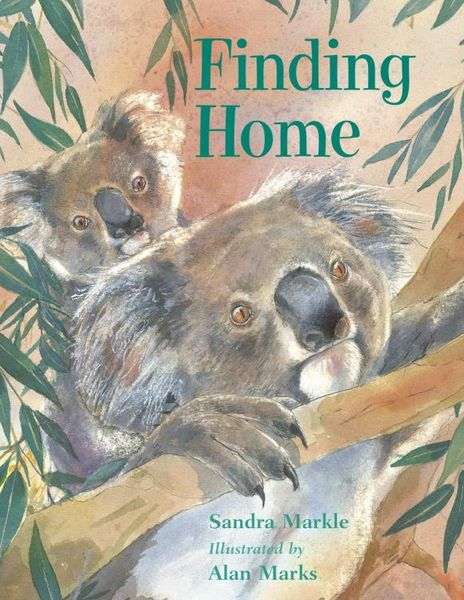 Finding Home finding hedgehog finding kitten finding penguin finding dino board 4 books 0 2 years old bilingual children s books
