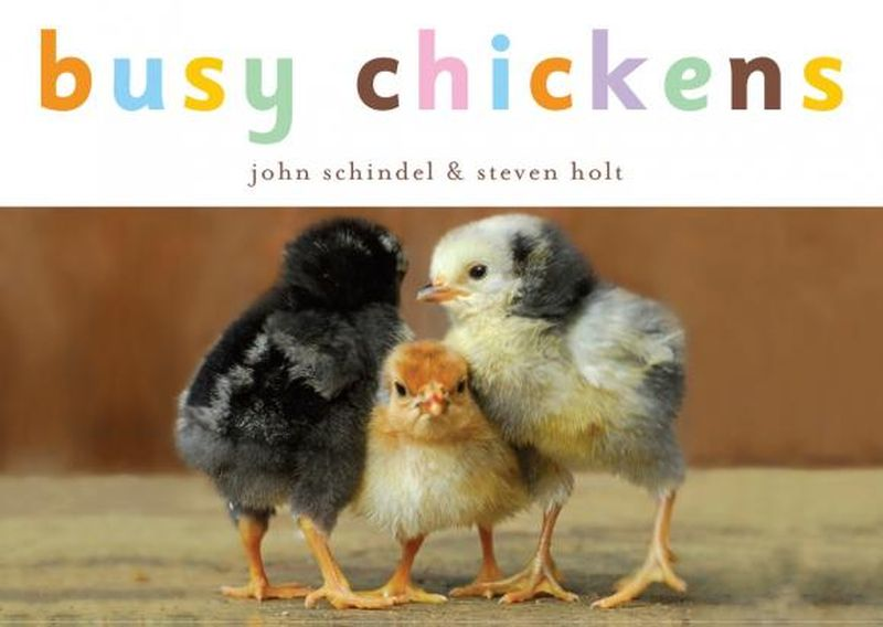 Busy Chickens подсвечник busy juliang zt106