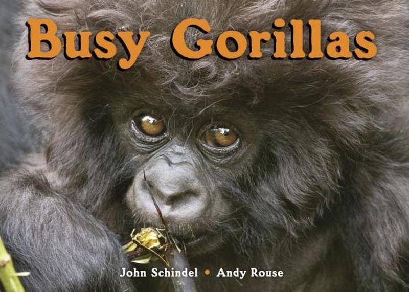 Busy Gorillas электроотвертка bosch ixo v full 06039a8022