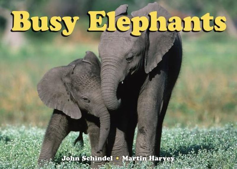Busy Elephants кастрюля oursson ca2800c bb