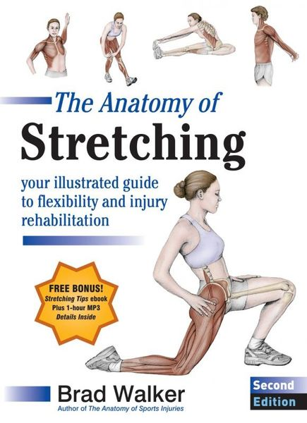 The Anatomy of Stretching, Second Edition clinical sports anatomy