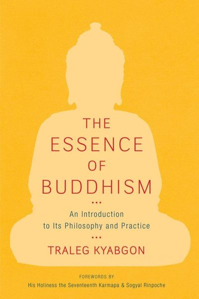 The Essence of Buddhism the princeton dictionary of buddhism