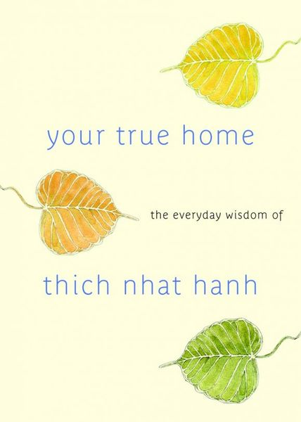Your True Home bill george discover your true north